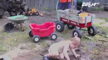 Giáo sư Mỹ: Hãy để trẻ nghịch bẩn và ăn thức ăn rơi xuống sàn