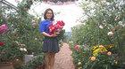 Chồng bỏ lương 100 triệu cùng vợ trồng 100 ngàn cây hoa hồng