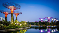 Nhiệm kỳ của Thủ tướng Singapore dài mấy năm?