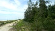 Nữ đại gia bí ẩn buông chục tỷ mua đất ven biển Tam Kỳ