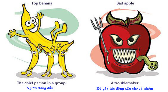 Học tiếng Anh: Thành ngữ tiếng Anh với egg, lemon, banana