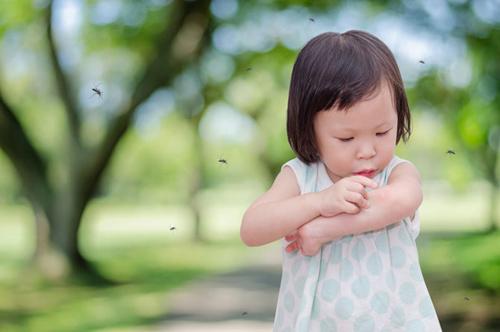 Tháng 7, bệnh viêm não Nhật Bản hoành hành