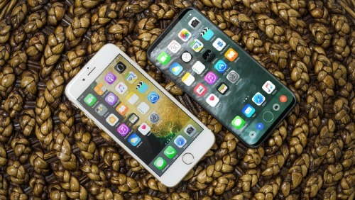 Apple, màn hình OLED, Samsung