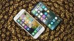 Apple sẽ tự sản xuất màn hình OLED vào năm tới