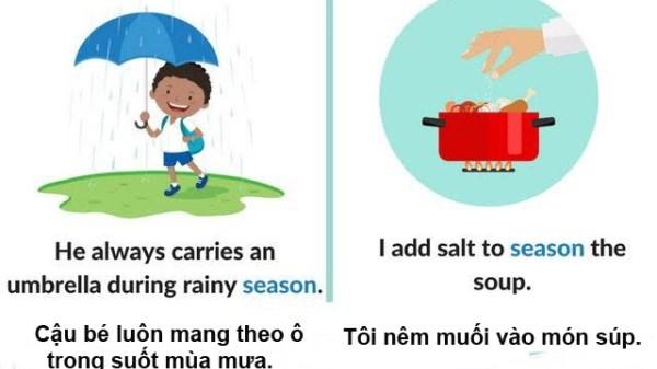 Các từ đa nghĩa 'season', 'spare' và 'current'