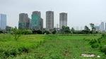 Đất 'làng' được đấu giá 860 tỷ đồng, nhiều đại gia đứng hình
