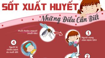 Đại dịch sốt xuất huyết: phải đọc để bảo vệ gia đình