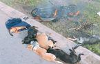 Nghi can trộm chó bị đánh bầm dập nhiễm HIV