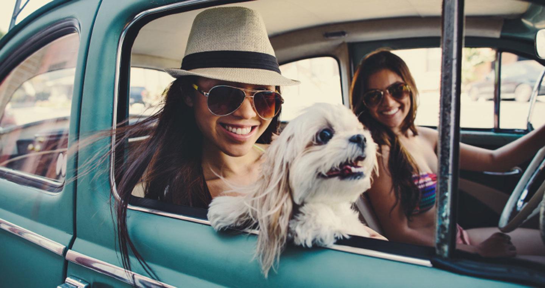 5 thói quen 'nguy hiểm' của chị em khi lái ô tô