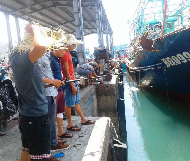 Thú câu cá dìa xả 'stress', kiếm tiền triệu mỗi ngày