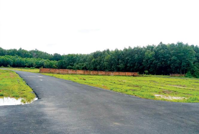 sân bay Long Thành, cò đất, sốt đất, đất sân bay, đất nền