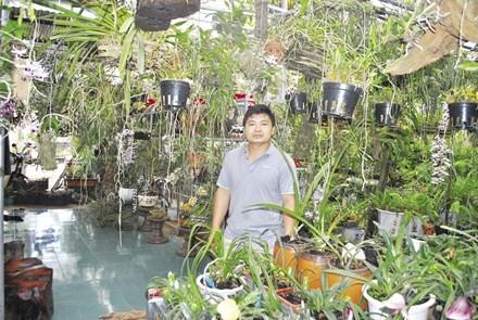 Tỷ phú lan rừng Việt Nam tìm ra loài lan mới cho thế giới