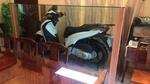Honda SH biển 6 con 9 cất trong tủ kính tại Việt Nam