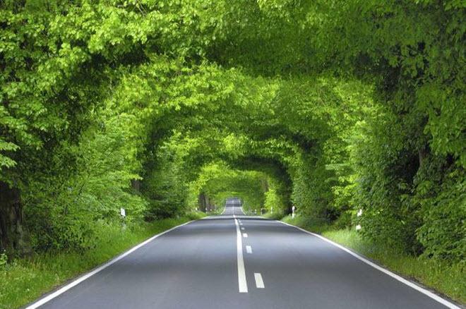 Mê mẩn ngắm 10 đường hầm tự nhiên đẹp nhất thế giới