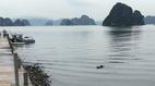 Thi thể nam giới dạt vào sát bờ biển ở Quảng Ninh