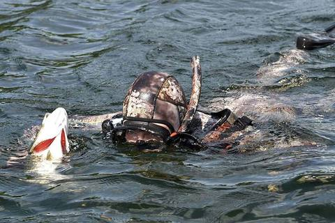 Xem Tổng thống Putin săn cá dưới đáy hồ