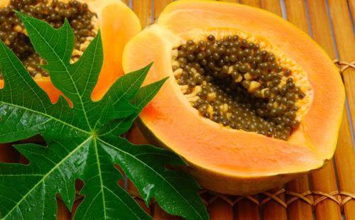 Phòng ngừa ung thư lưỡi từ trái nho, lá trà xanh, lá đu đủ
