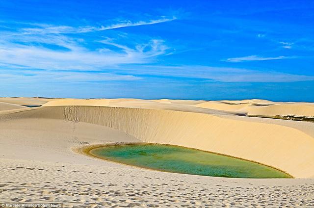 Chuyện lạ, Chuyện lạ thế giới, Sa mạc