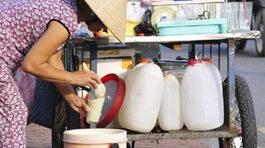 Sữa đậu nành cũng có thể làm giả được từ hóa chất