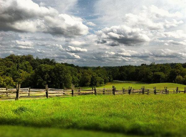 thuế nhà đất, mua bán nhà, bất động sản, tư vấn pháp luật đất đai