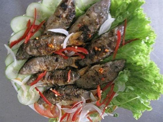 Về miền Tây mùa nước nổi thưởng thức cá heo