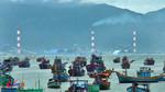 Cách chức giám đốc tư vấn nhận chìm bùn nhiệt điện Vĩnh Tân