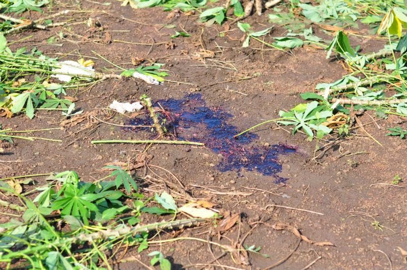 Nữ sinh lớp 11 bị bắn chết tại nhà: Nghi vấn từ chuyện tình cảm