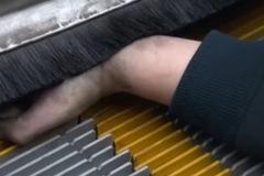 Bé trai bị cắt lìa tay khi nhặt dép trên băng chuyền