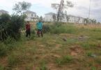Cán bộ đang mua 1.300m2 đất giá 'bèo' thì bị tuýt còi