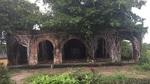 Độc nhất Việt Nam: Rễ cây ôm chặt, giữ ngôi đình không bị sập