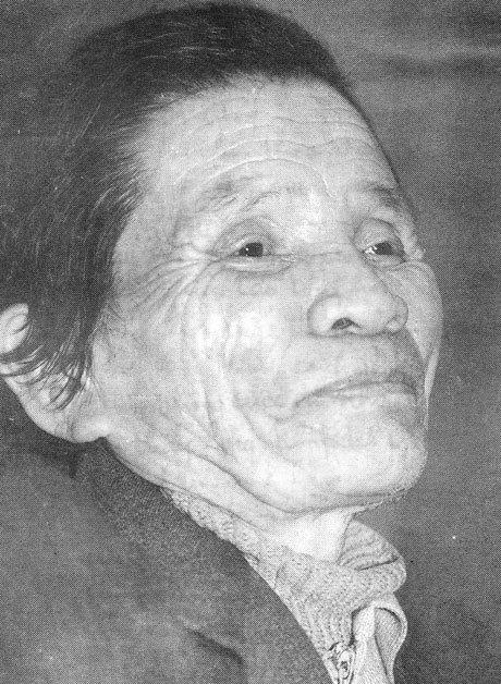 Trần Hữu Thung, Nghệ An