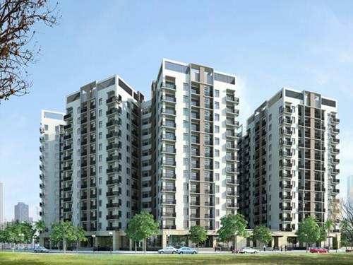 khi mua nhà chung cư, bạn nên chọn các tòa nhà mang khoảng Minh đường đa dạng, sáng sủa