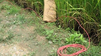 Hà Nội: Bẫy trộm bằng dây điện trần gây chết người