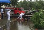 Bão Hato vào Quảng Đông, hàng chục thương vong
