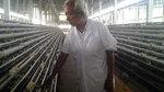 Lão nông buôn 200.000 trứng tí hon, lãi 12 triệu/ngày