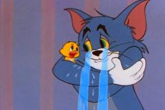 Khi mèo Tom trở thành...mẹ