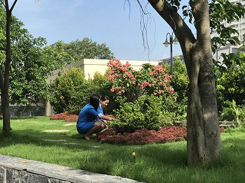 Đại diện WHO tại VN: Nhiều bệnh viện trở thành công viên