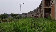 Hà Nội lập hồ sơ thu hồi hàng nghìn m2 đất dự án bỏ hoang