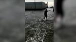 Xem dân Mỹ lướt ván trên đường phố lụt