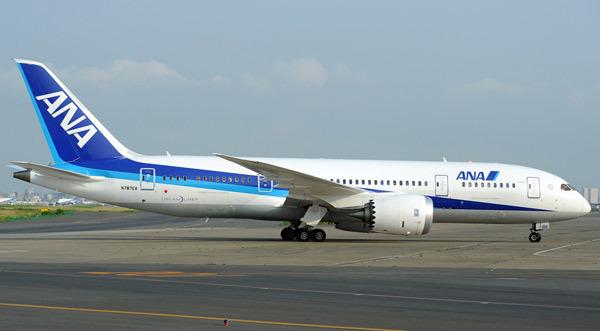 Phi công phân tích chuyện máy bay bị sét đánh khi hạ cánh ở Nội Bài