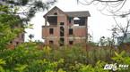 Khu biệt thự trăm tỷ bỏ hoang, cỏ mọc um tùm như nhà