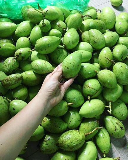 xoài bao tử, hoa quả Việt Nam, món ăn vặt, món ăn vặt ngon,