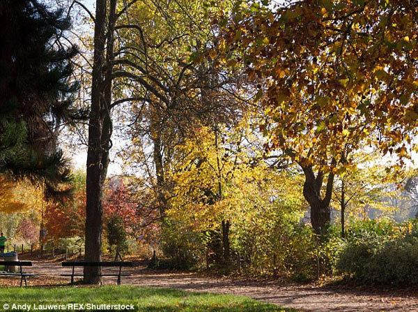 Công viên khỏa thân, công viên cho người khỏa thân