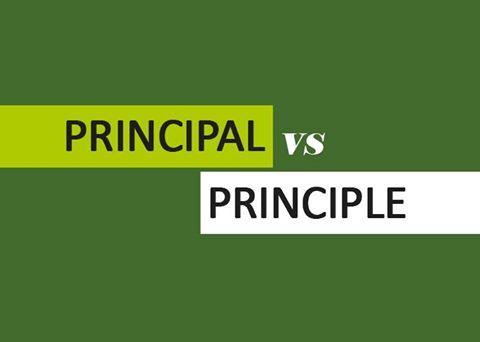 """Phân biệt """"principal"""" và """"principle"""""""