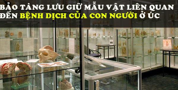 Những bảo tàng kỳ quái nhất thế giới khiến người xem rợn tóc gáy