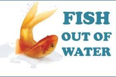 """Một phút học thành ngữ: """"A fish out of water"""""""