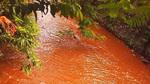 Nước suối chuyển màu đỏ giữa Hạ Long
