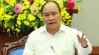 Thủ tướng yêu cầu điều tra, làm rõ vụ phá rừng tại Bình Định