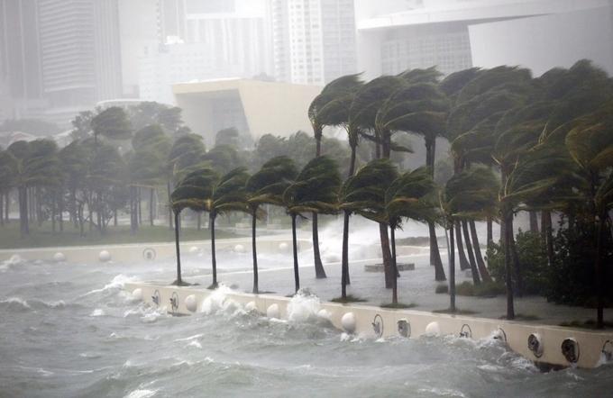 bão, siêu bão, bão Irma