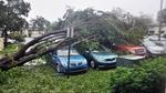 Bão 'quái vật' Irma càn quét miền đông nước Mỹ